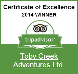 TripAdvisor_2014_Excellence