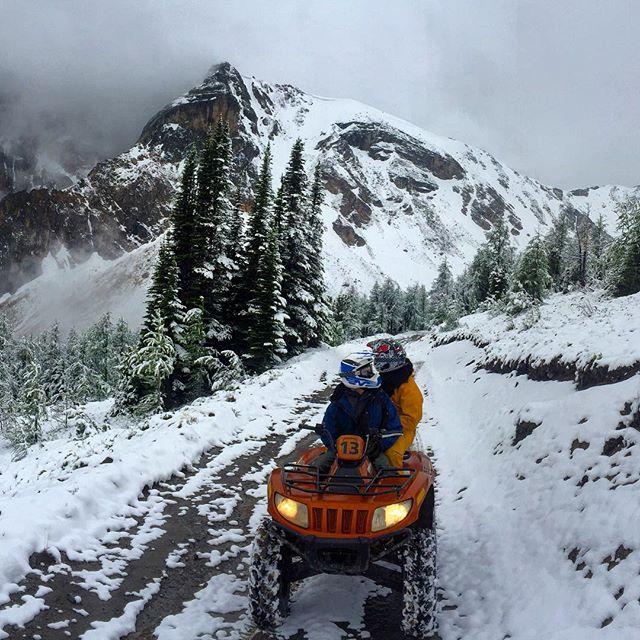 8 to 10cm of fresh snow at Paradise. Fresh …