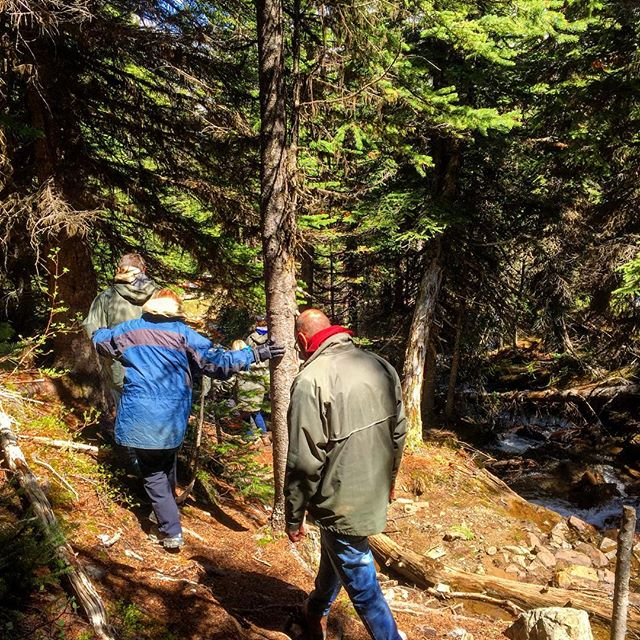 The Path to the Smith Falls . .  It's a short walk through the forest next to Spring Creek to visit the spectacular Smith Falls. Don't miss it!  #ATV #Tour #Waterfall #PanoramaBC #bcrockies #ColumbiaValley #Invermere #Summer #Activities