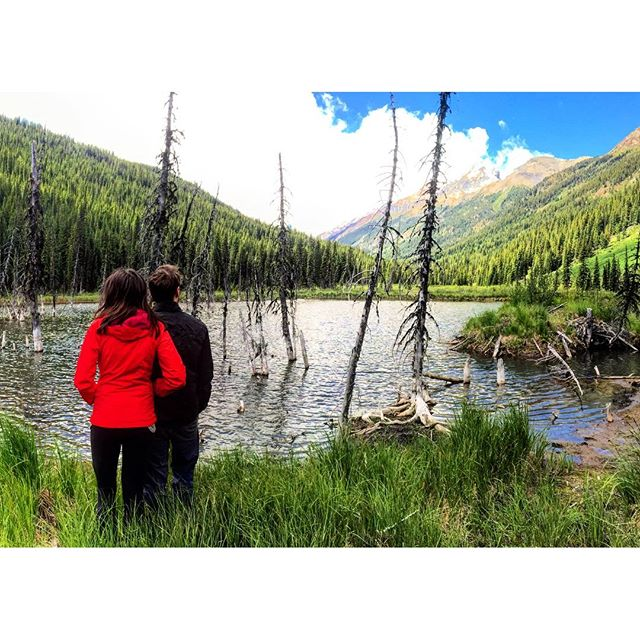 Checking out the big beaver pond in the Bruce Creek valley.  #ExploreBC #Canada #CanadianRockies #Banff #Canmore #Invermere #Kootrocks
