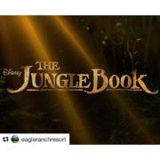 MOVIE NIGHT UNDER THE STARS TONIGHT!!👍😄 Instagram Repost from @eagleranchresort …