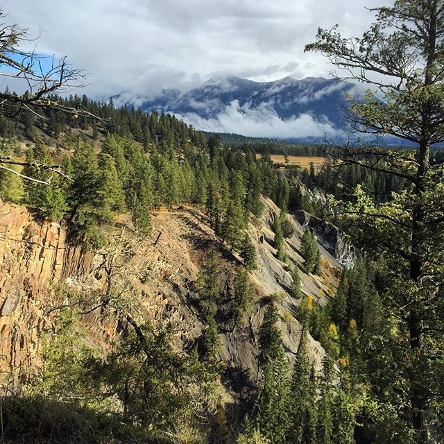A viewpoint on the Waterfall and Wetlands Tour yesterday. This …
