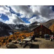 It's that time of year at Paradise Cabin. Just an …