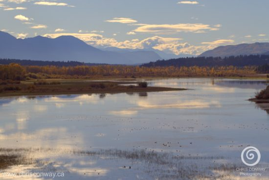 invermere-and-wetlands-wm-sm