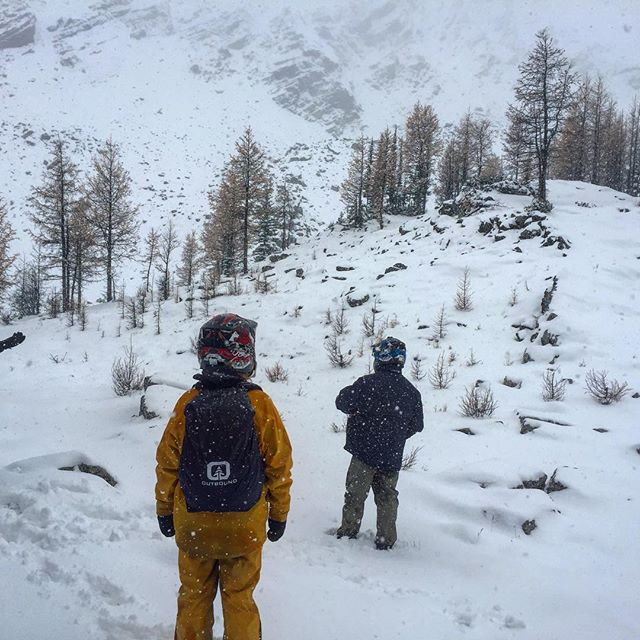 Exploring in a winter wonderland today at Paradise Basin.
