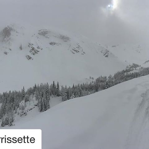 Instagram repost from @m.morrissette ・・・ Toby Creek you were great, …