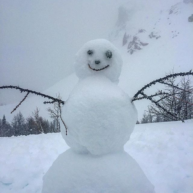 Another happy visitor to Paradise Basin today! #snow #snowday #powdersnow #snowperson #bcstorm