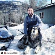 Repost @feroze8888 ・・・ Guard Dog On Duty !!! #mountaindog #canada🇨🇦 …