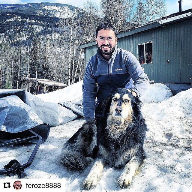 Repost @feroze8888 ・・・ Guard Dog On Duty !!! #mountaindog #canada🇨🇦 …