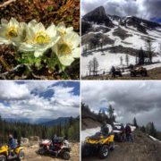 There's nothing quite like one of our #ATV tours! *************************** …