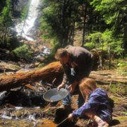 A visit to the Smith Falls is included on all …