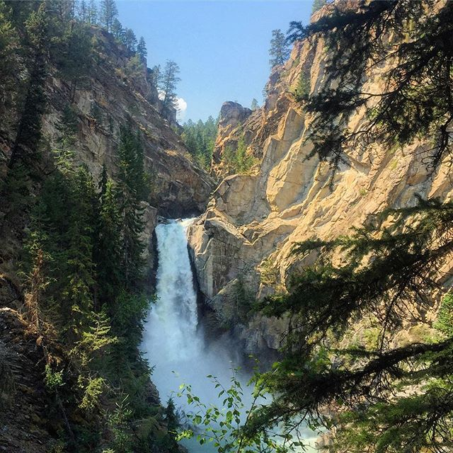 Forster Falls yesterday on our #Wetlands and #Waterfall #ecotour. #tobycreekadventures #canadianrockies #kootrocks