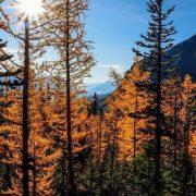 Repost from @feasta87 ・・・ Fall has never looked so beautiful …