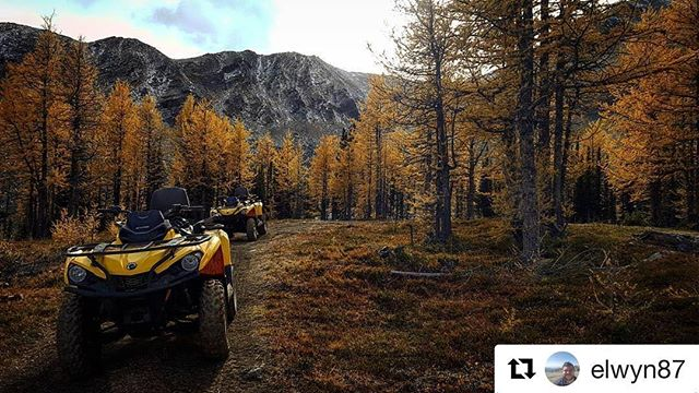 Repost from @elwyn87 ・・・ Amazing day with @tobycreekadv Quad Biking! May not be normal 2 wheel sort of biking but still amazing fun to throw about off road and admire the views. Route is up to an old Silver Mine with plenty of Photo stops.  #invermere #britishcolumbia #canada #canada150 #canadianrockies #tobycreekadventures #atv #quadbike #brp #canam #offroad #adventure #silver #mine #tobycreek #tourist #holiday #travel #travelling #travelgram #bikersofinstagram #rideout #rideordie #instabike #explorecanada