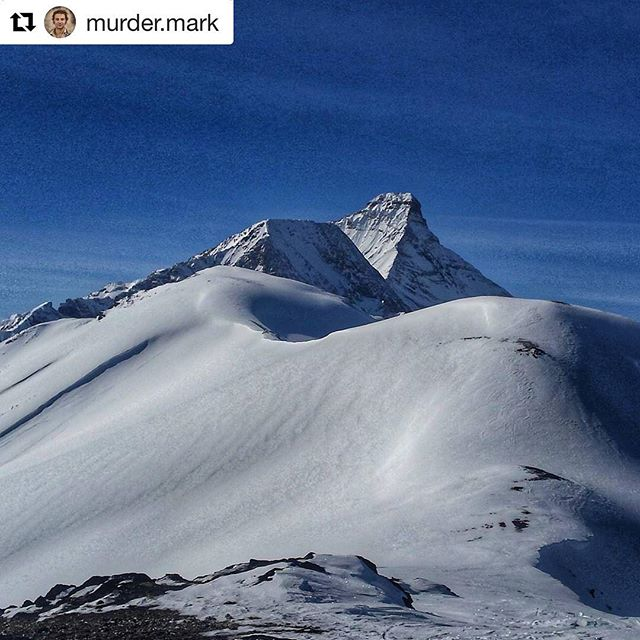 #Repost from @murder.mark ・・・ Mt Nelson from Paradise ridge. @tobycreekadv  #paradise #alpine #kootrocks #hellobc #braap #twostroke #kootenays #purcell #kootenayviews #bluebird  #winterfun #snowmobile #explorebc