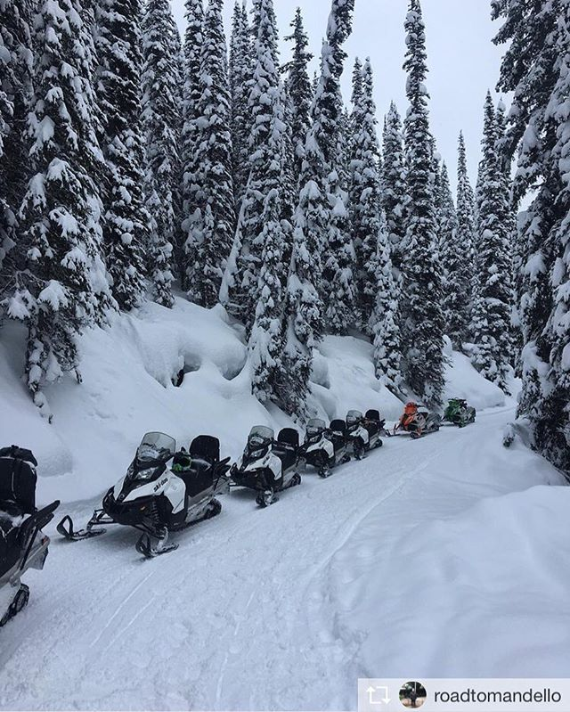 Repost from @roadtomandello * .  #Snowmobile #Canada #tobycreek