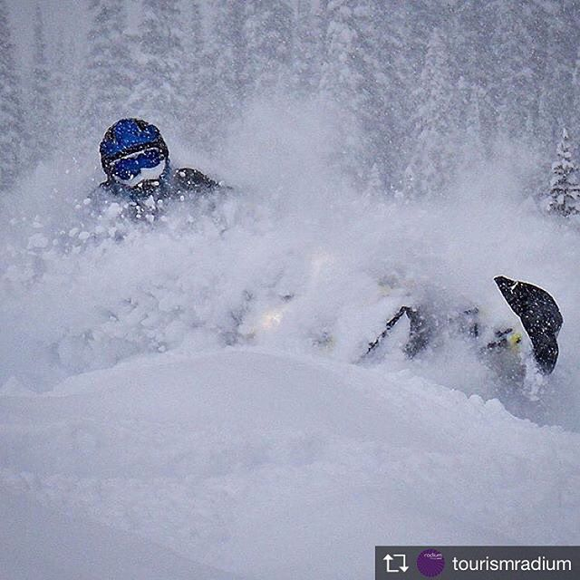 """Repost from @tourismradium  Some would say """"There's no better way to find your winter peace then by sled!"""" ... http://ow.ly/R2FY30i4t2y 📷: @kwik_kliker #Radium #TravelCV #ExploreBC #KootRocks"""