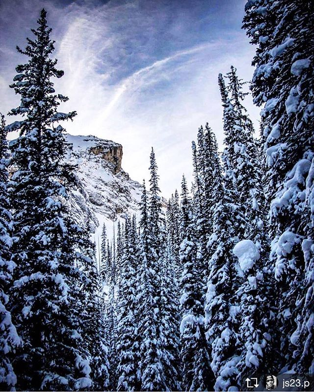 Repost from @js23.p  Incredible views snowmobiling with the amazing …