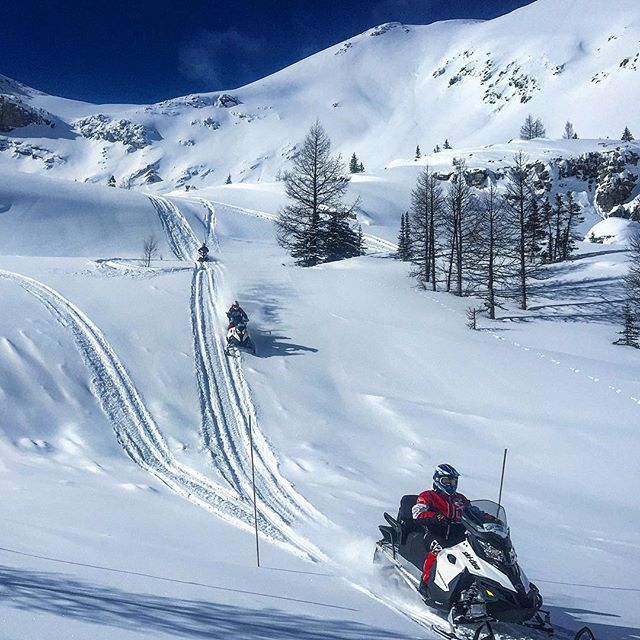 Exploring #ParadiseBasin !! #tobycreekadventures #snowmobiletours #canadianrockies #panoramabc #purecanada #banff #explorebc …