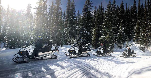 Spring sunshine!! #tobycreekadventures #snowmobiletours
