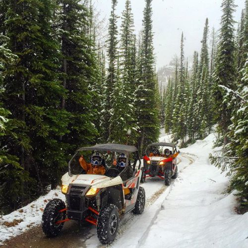 Fresh snow on the Paradise trail today.