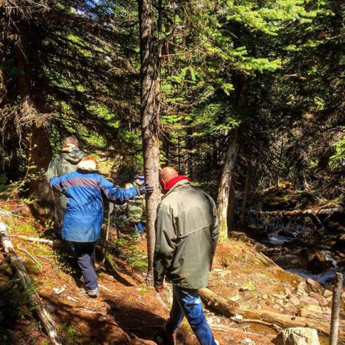 The Path to the Smith Falls . .  It's …