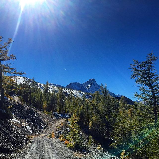 The path less travelled… #ParadiseRidge and Mt. Nelson