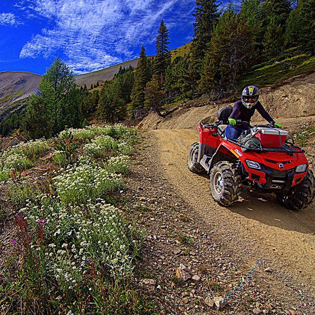 It's #GroundhogDay !  Are you planning your #summer visit in the #CanadianRockies ? Our #ATV guided tours offer a spectacular option to explore the mountains.  #backcountry #travelbc #travelalberta #visitalberta #exploreBC #kootrocks #banff #canmore #panoramabc #ColumbiaValley #canada150