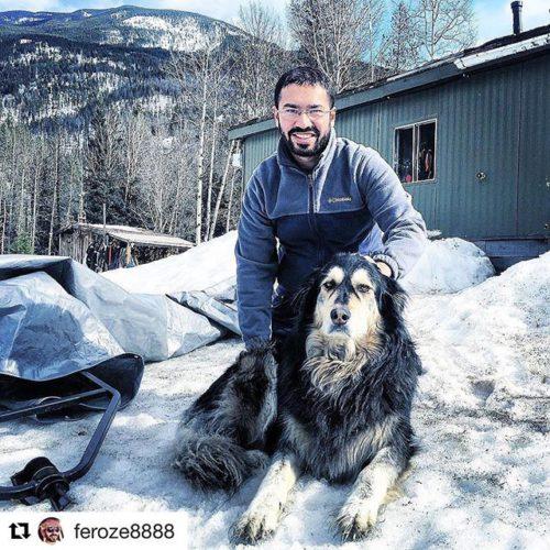 Repost @feroze8888 ・・・ Guard Dog On Duty !!! #mountaindog #canada???????? …
