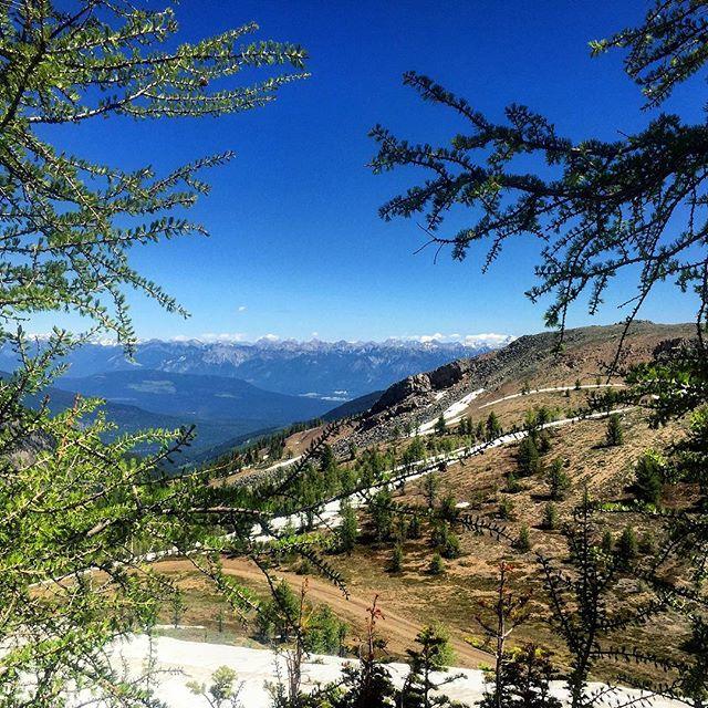 Endless mountain peaks. The #CanadianRockies from #ParadiseRidge.
