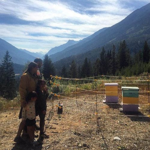 Visiting the bees on today's half-day #atvtour.  For more …