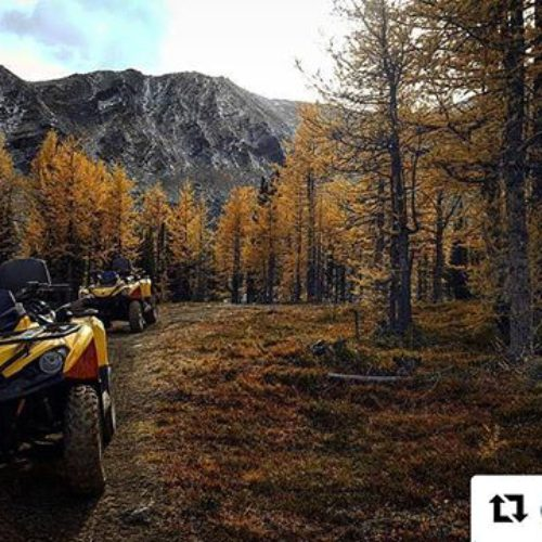 Repost from @elwyn87 ・・・ Amazing day with @tobycreekadv Quad Biking! …