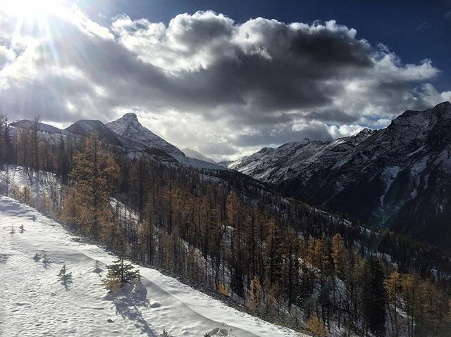 The #Larches are dropping their needles and the snow is gaining ground. It's chilly up high but oh so beautiful as fall marches on towards winter. #ATVtours #ParadiseRidge #PanoramaBC #Thanksgiving2017 #PureCanada #tobycreekadventures