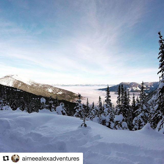 REPOST: @aimeealexadventures ・・・ Today was a good day! #snowmobile #tobycreekadventures