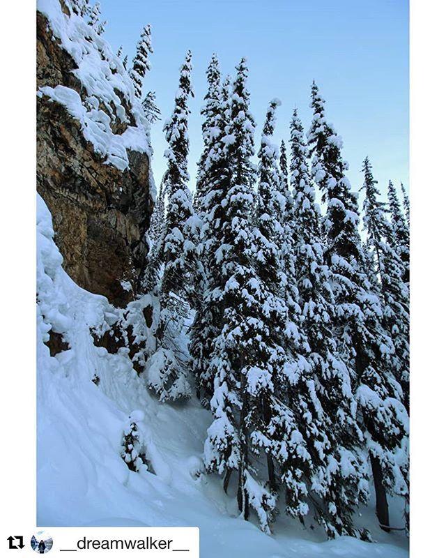 REPOST: @__dreamwalker__ ・・・ wonderful Canada. ________________________________________________ #invermere#panoramamountain#tobycreekadventures#selina_in_canada#canada#beautifulbc#beautifulbritishcolumbia#canadalife#winter#britishcolimbia#bc#trees#frozen#stone#snow#landscape#nature#silhouette#moodygrams#winterwonderland#igersgermanyofficial#mothernature#agameoftones#wekeepmoments#neverstopexploring#landscape_lover#diewocheaufinstagram#eyeemphoto#rsa_landscape#2017