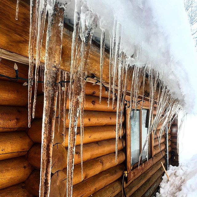 #IceIceBaby !! ????#tobycreekadventures #winter #icicles