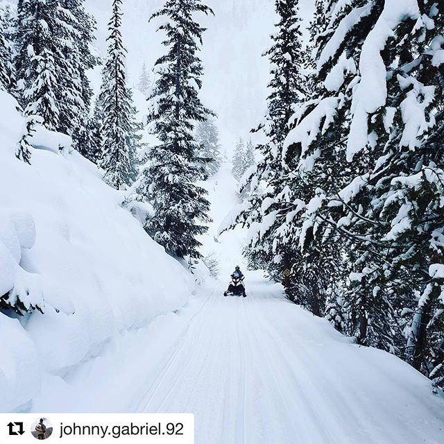 #Repost @johnny.gabriel.92 ・・・ High altitude at high speed… #tobycreekadventures #skidoo …