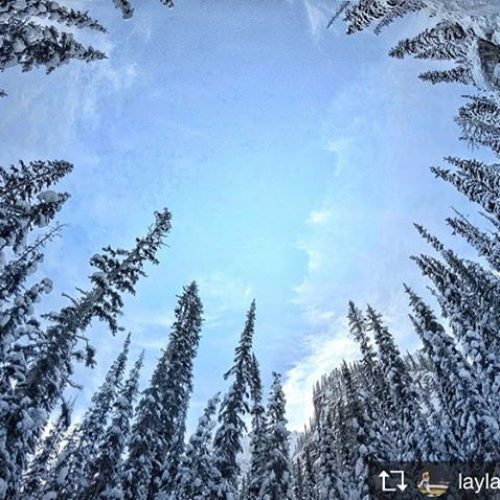 Repost from @laylastravels  It's white! It's white everywhere! . …