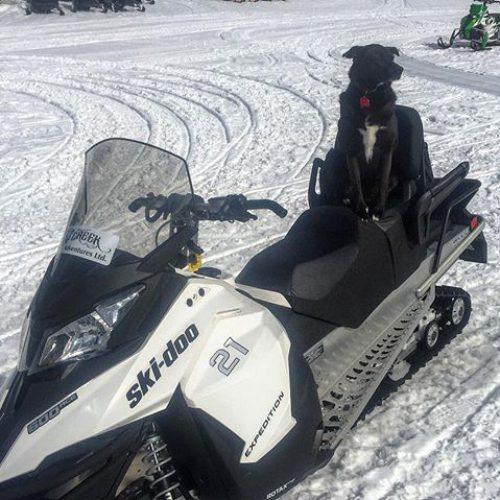 Ready to go!! Has anyone seen my driver? #snowmobiletours #tobycreekadventures …