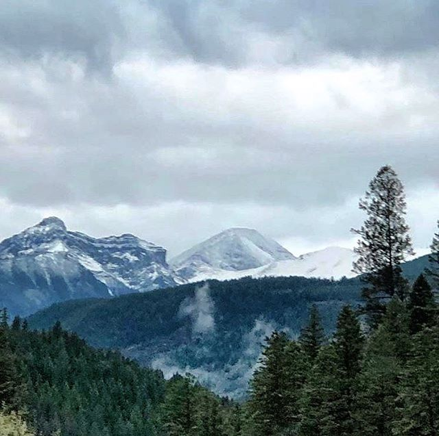 Fresh snow at Paradise this morning.  Today's guests are in for a treat ???? This bodes well for brilliant fall colours in the alpine soon. . #tobycreekadventures #panoramamountainresort #banff #kootrocks #kootenay #utvtours #atvtours #summersnow . . ????: @nicsledchick
