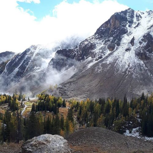 #Repost @jawshs_davis ・・・ Best view I found today at panorama! …