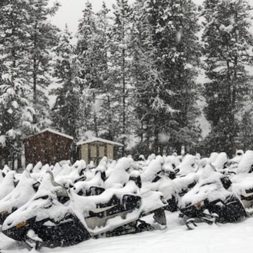 It's snowing! More in the forecast! The sleds are out …