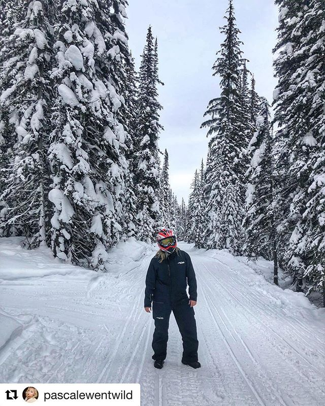 #Repost from @pascalewentwild ・・・ Walking in a winter wonderland 🧤 …
