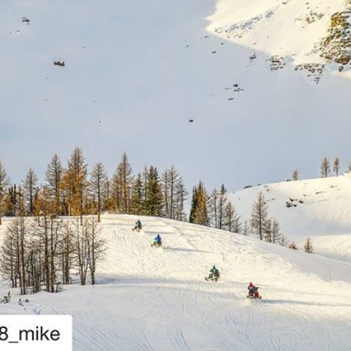 #Repost from @fz8_mike ・・・ Back up to the Paradice Bowl …