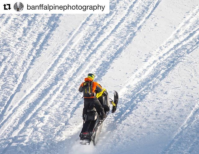 #Repost from @banffalpinephotography ・・・ Mountain sleds, available at #TobyCreekAdventures .