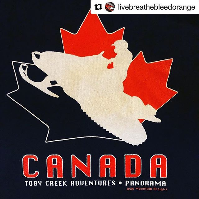 #Repost from @livebreathebleedorange ・・・ Take me back to the snow so I can mobile all day long.... #Canada #bc #rockymountains #snow #snowmobile #tobycreekadventures