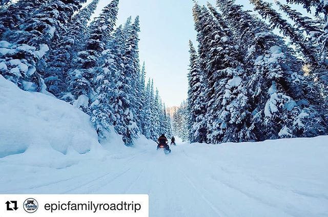 #Repost from @epicfamilyroadtrip ・・・ This place is a winter playground! …