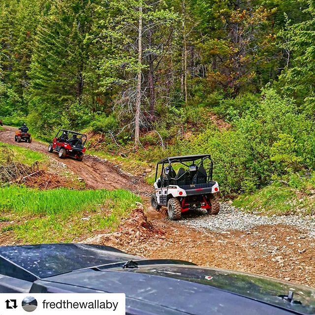 #Repost from @fredthewallaby ・・・ ATV tour with @tobycreekadv #atv #adventuretime …