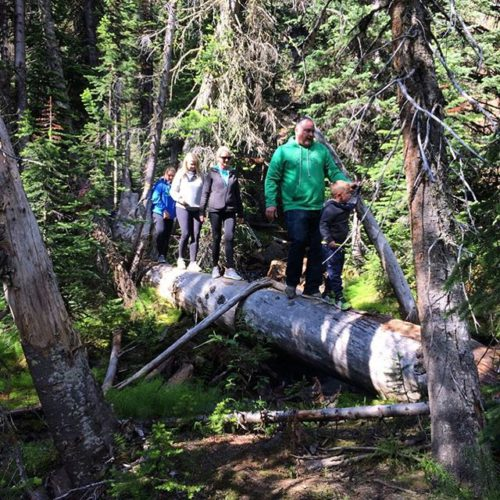 Exploring the old-growth forest near Smith Falls on the trail …